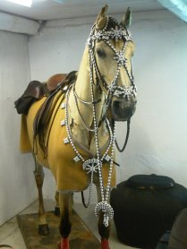 horse_bridle_by_alauna